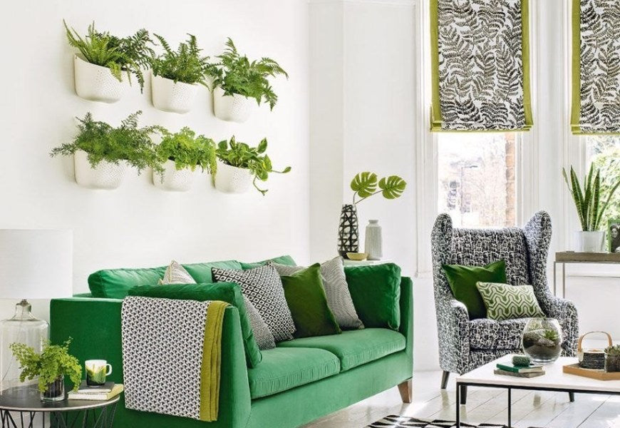 Plant Wall Decoration