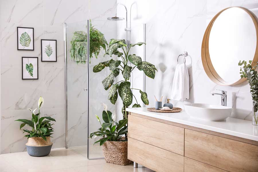 Interior design with plants - unique interior design accessory