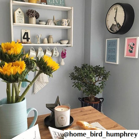 home_bird_humphrey