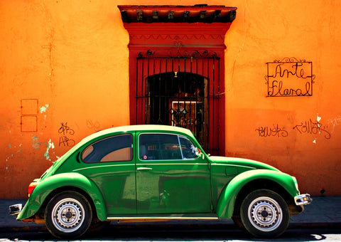 Green on Orange Bug