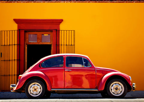 Red on Orange Bug