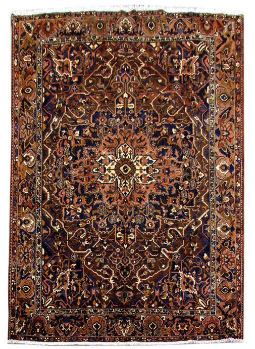 10' x 12' Authentic Hand Knotted Persian Bakhtiari Rug - Iran - bestrugplace