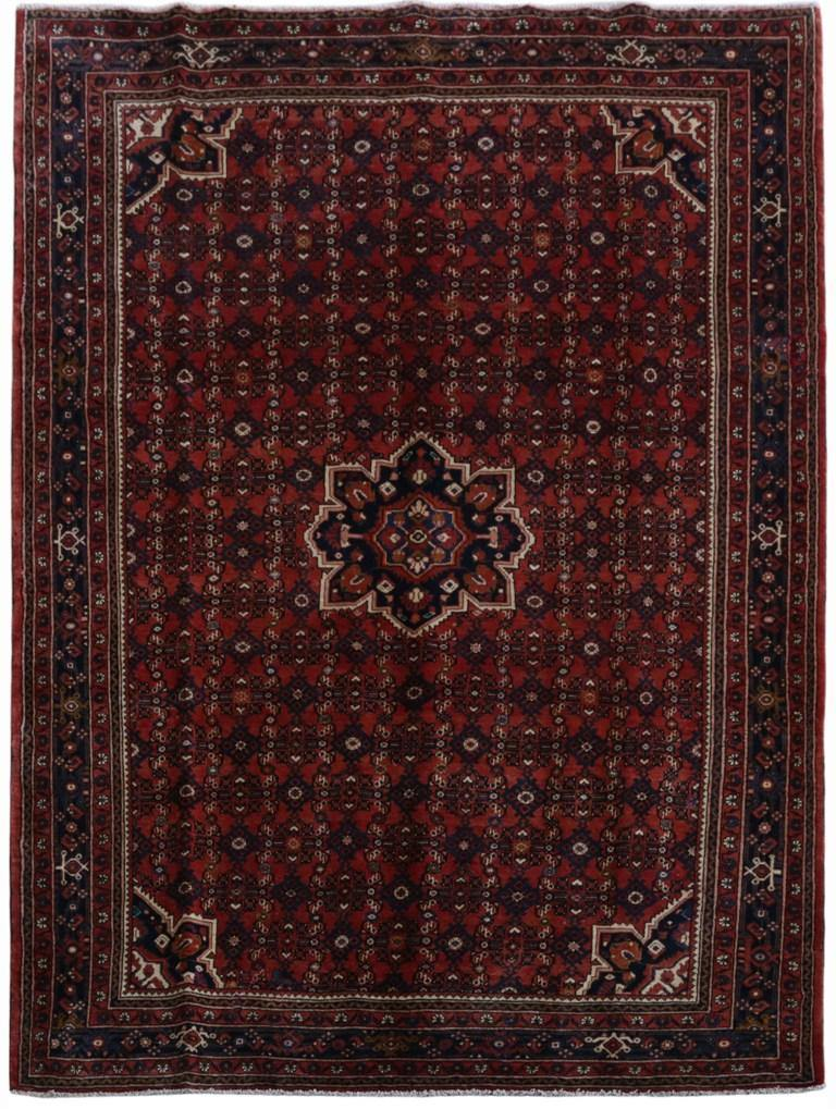 7x10 Authentic Hand-knotted Persian Hamadan Rug - Iran