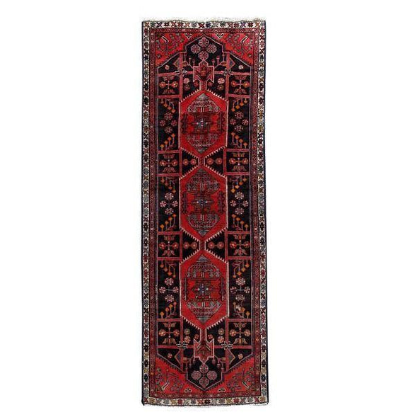 3x10 Authentic Hand Knotted Persian Hamadan Rug - Iran