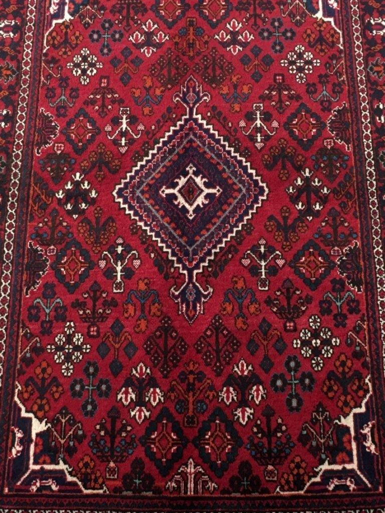 5x7 Authentic Hand-knotted Persian Josheghan Rug - Iran
