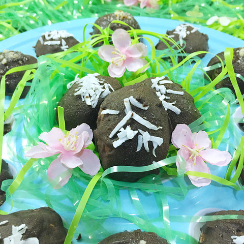 A healthier alternative to Easter candies made with High Quality Protein Powders!