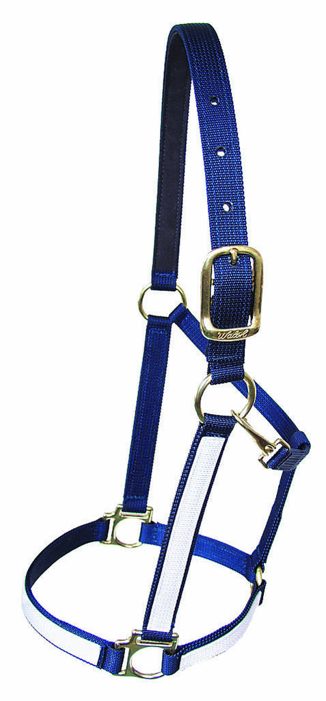 "Two Tone 1"" Victory Halter"