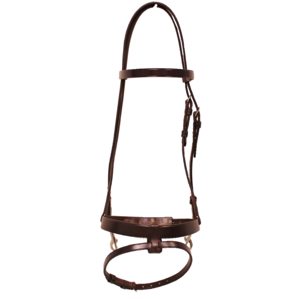 Walsh Training Headstall with Flash Noseband