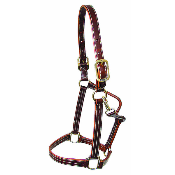 Walsh British Halter - Straight Chin