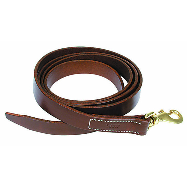 Walsh Leather Lead with Snap