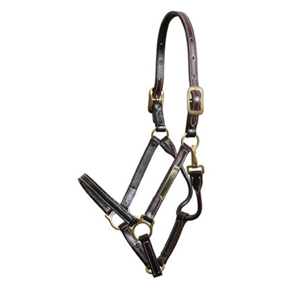 Walsh Showman Halter - Straight Chin