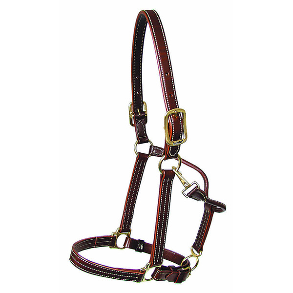Walsh Kentucky Halter - Adjustable Chin
