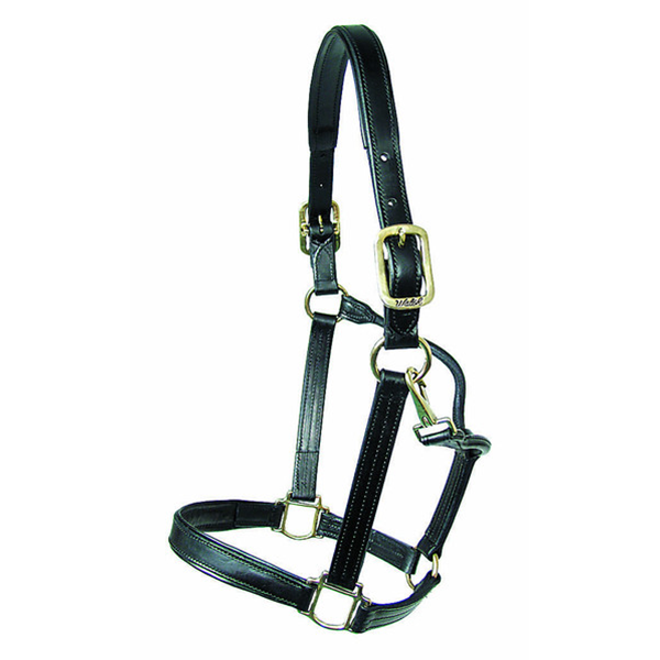 Walsh Dressage Halter - Straight Chin