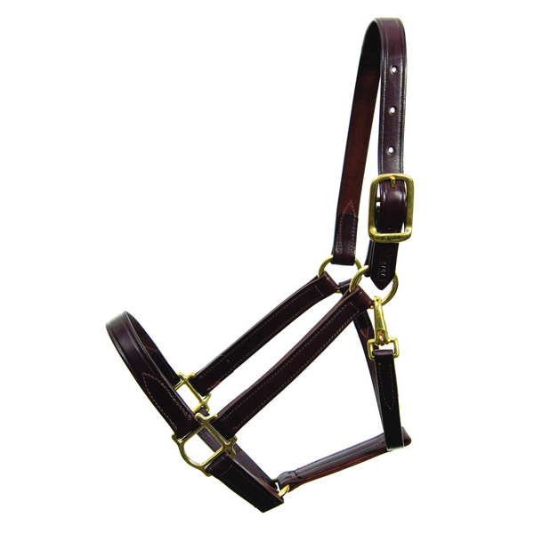 Walsh Heritage Halter - Straight Chin-2746