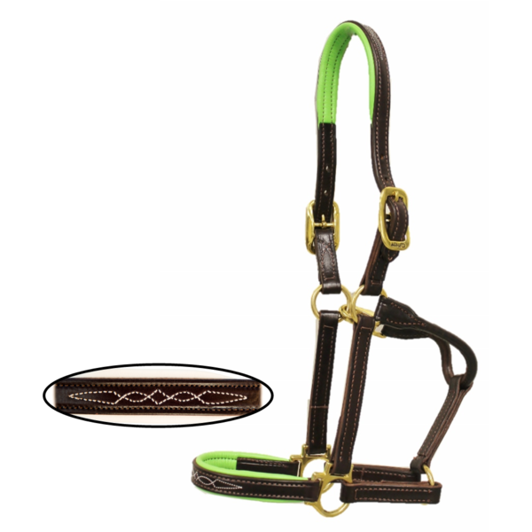 walsh signature halter walsh horse products buy now online