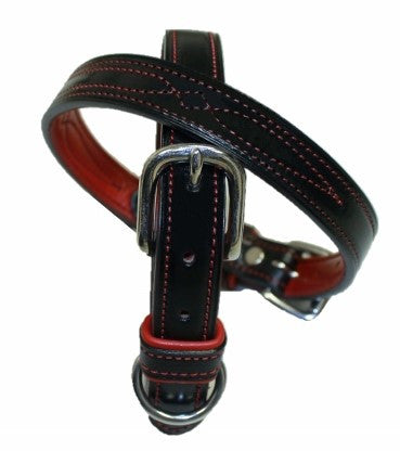 Centennial Dog Collar