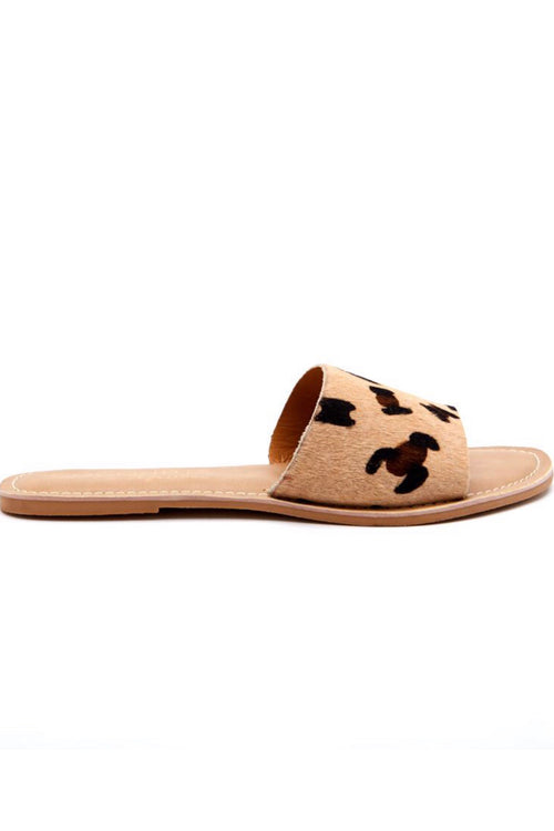Coconuts by Matisse CABANA Leopard/Cowhair