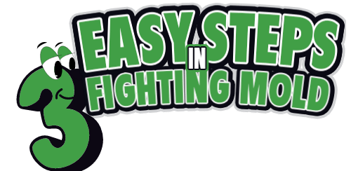 3 Easy Steps in Fighting Mold