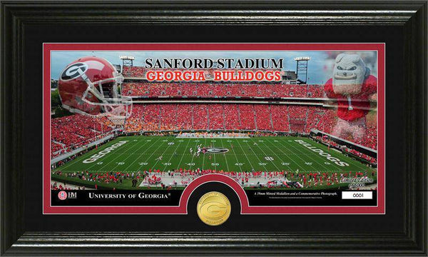 "Georgia Bulldogs University of Georgia ""Stadium"" Bronze Coin Panoramic Photo Mint (HM)"