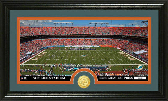 "Miami Dolphins ""Stadium"" Bronze Coin Panoramic Photo Mint (HM)"