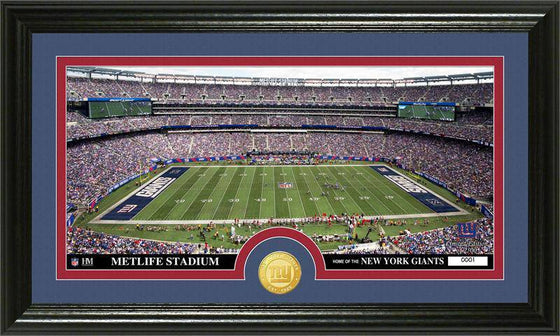 "New York Giants ""Stadium"" Bronze Coin Panoramic Photo Mint (HM)"