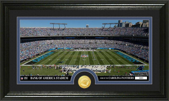 "Carolina Panthers ""Stadium"" Bronze Coin Panoramic Photo Mint (HM)"