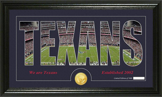 "Houston Texans ""Silhouette"" Bronze Coin Panoramic Photo Mint (HM)"