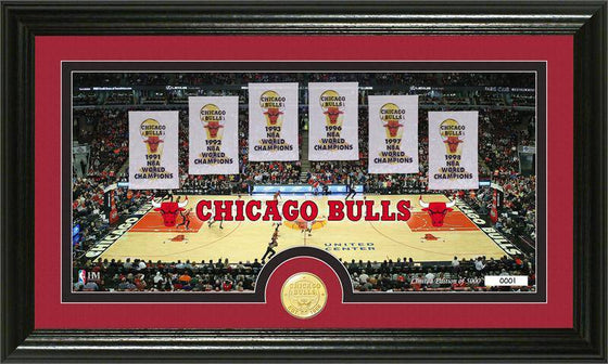 "Chicago Bulls ""Traditions"" Bronze Coin Panoramic Photo Mint (HM)"