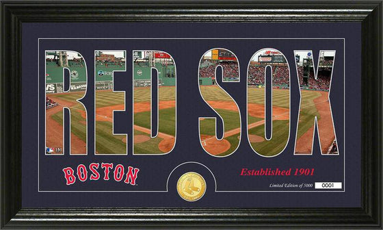 "Boston Red Sox ""Silhouette"" Bronze Coin Panoramic Photo Mint (HM)"
