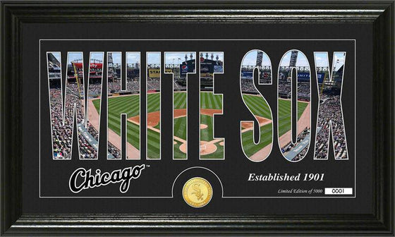 "Chicago White Sox ""Silhouette"" Bronze Coin Panoramic Photo Mint (HM)"