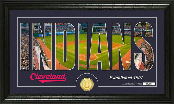 "Cleveland Indians ""Silhouette"" Bronze Coin Panoramic Photo Mint (HM)"