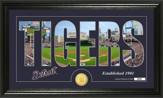 "Detroit Tigers ""Silhouette"" Bronze Coin Panoramic Photo Mint (HM)"