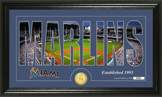 "Miami Marlins ""Silhouette"" Bronze Coin Panoramic Photo Mint (HM)"
