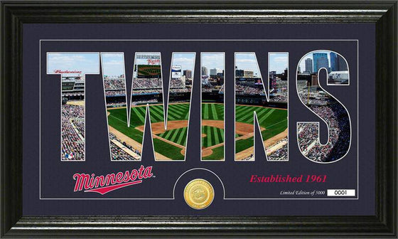 "Minnesota Twins ""Silhouette"" Bronze Coin Panoramic Photo Mint (HM)"
