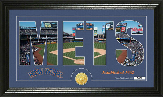 "New York Mets ""Silhouette"" Bronze Coin Panoramic Photo Mint (HM)"