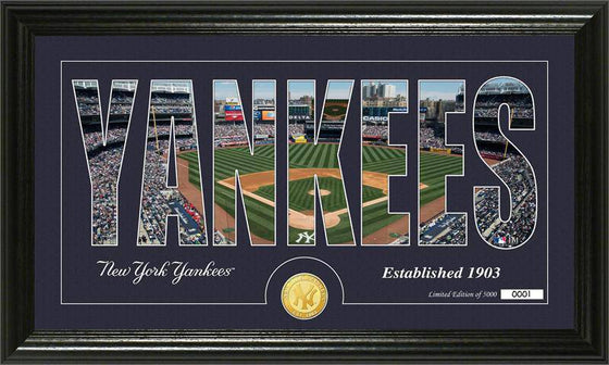 "New York Yankees ""Silhouette"" Bronze Coin Panoramic Photo Mint (HM)"