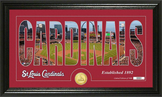 "St. Louis Cardinals ""Silhouette"" Bronze Coin Panoramic Photo Mint (HM)"