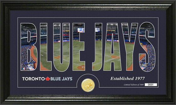 "Toronto Blue Jays ""Silhouette"" Bronze Coin Panoramic Photo Mint (HM)"