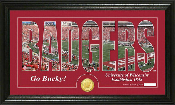 "Wisconsin Badgers University of Wisconsin ""Silhouette"" Bronze Coin Panoramic Photo Mint (HM)"