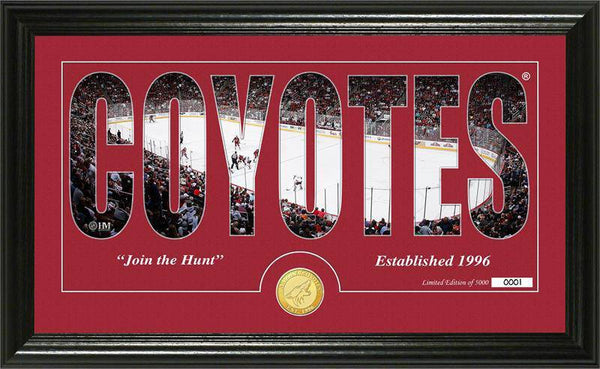"Arizona Coyotes ""Silhouette"" Bronze Coin Panoramic Photo Mint (HM)"