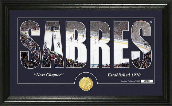 "Buffalo Sabres ""Silhouette"" Bronze Coin Panoramic Photo Mint (HM) - 757 Sports Collectibles"