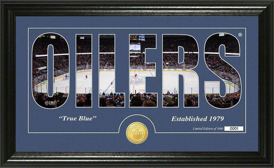 "Edmonton Oilers ""Silhouette"" Bronze Coin Panoramic Photo Mint (HM) - 757 Sports Collectibles"