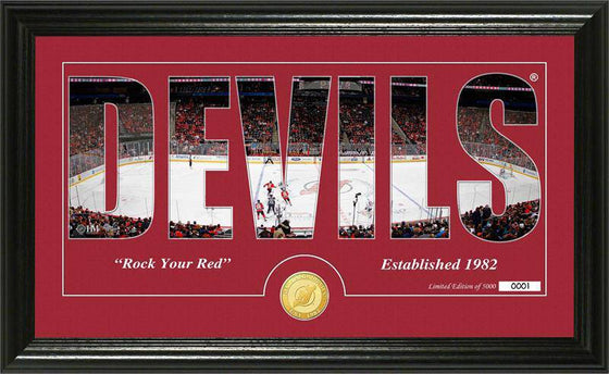 "New Jersey Devils ""Silhouette"" Bronze Coin Panoramic Photo Mint (HM) - 757 Sports Collectibles"