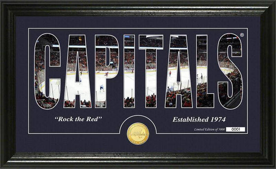 "Washington Capitals ""Silhouette"" Bronze Coin Panoramic Photo Mint (HM) - 757 Sports Collectibles"
