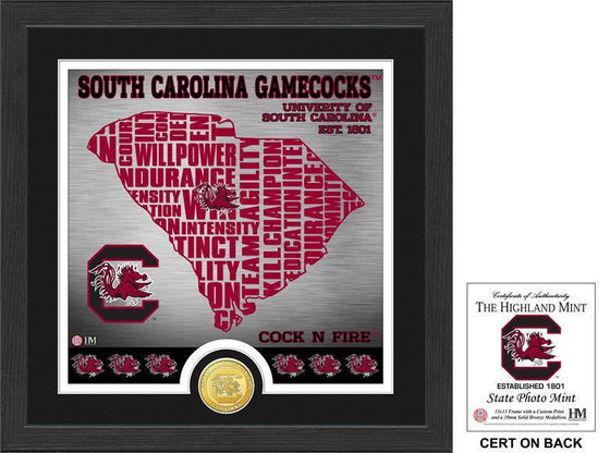 "University of South Carolina Gamecocks ""State"" Bronze Coin Photo Mint (HM) - 757 Sports Collectibles"
