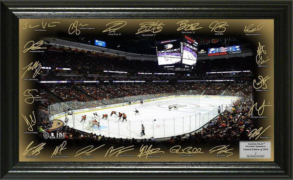 Anaheim Ducks Signature Rink (HM)