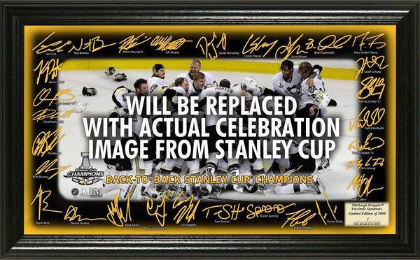 "2017 Stanley Cup Champions ""Celebration"" Signature Rink (HM)"