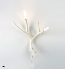 Superordinate Antler - Sconce