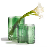 Set of 2 Organic Assymetrical Glass Vases
