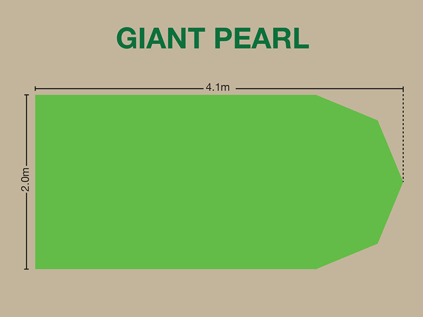 Giant Pearl